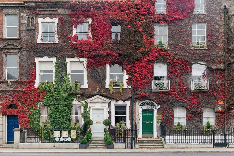 Beautiful Dublin: St Stephens Greens leaves covered building photo