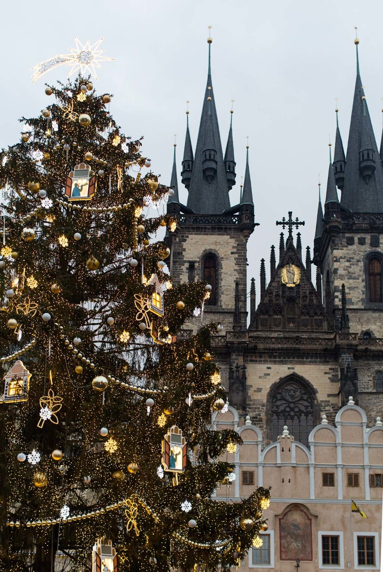 Prague Christmas market Old Town Square tree photo