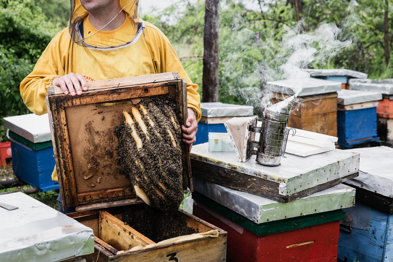 Beekeeper in Macedonia travel photography