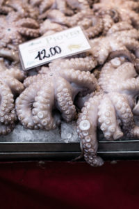 Venice Rialto market octopus photo